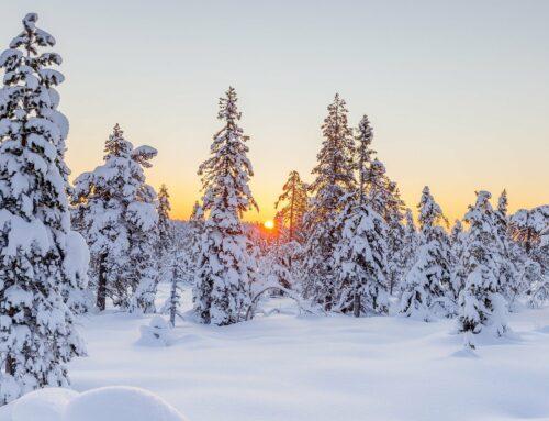 Atooppinen iho ja talvi
